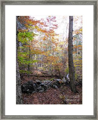 Stonewall In The Woods Framed Print by Linda Marcille
