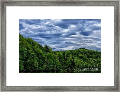 Stonewall Jackson Lake Wildlife Management Area Framed Print by Thomas R Fletcher
