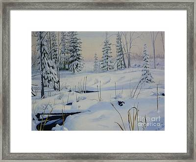 Stoney Swamp Framed Print