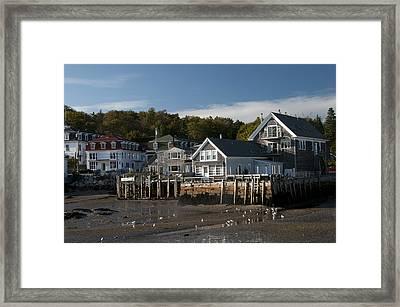 Stonington Harbor Framed Print by Paul Miller