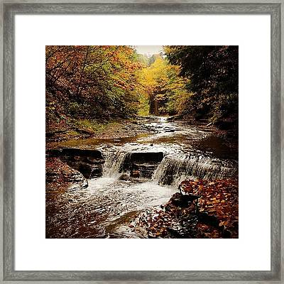 Stony Brook Gorge Framed Print by Justin Connor