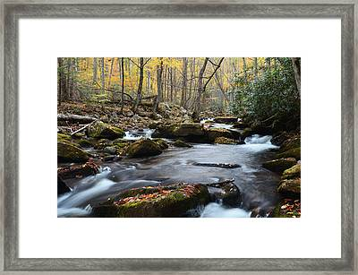 Stony Creek Framed Print