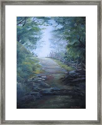 Stony Path Framed Print