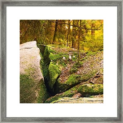 Stony Woods Square Framed Print