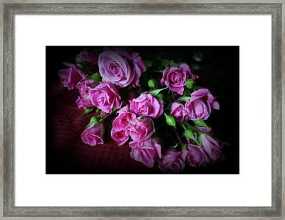 Stop And Smell The Roses Framed Print by Kay Novy