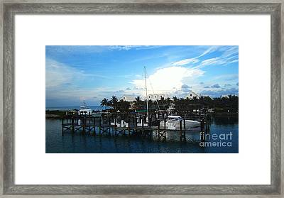 Stop In Framed Print by Alison Tomich