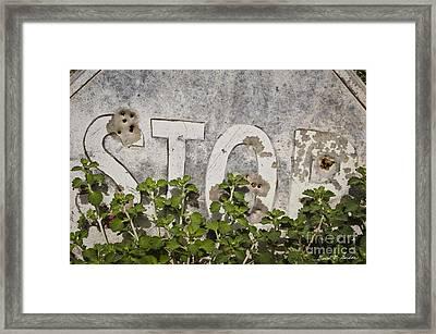 Stop Sign Framed Print by David Gordon