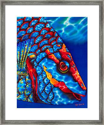 Stoplight Parrotfish Framed Print by Daniel Jean-Baptiste