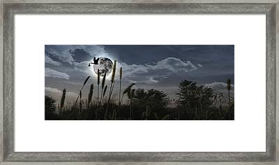 Stork Flying With Baby In Beak Framed Print by Panoramic Images