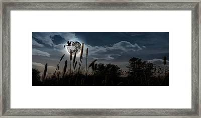 Stork With A Baby Flying Over Moon Framed Print by Panoramic Images