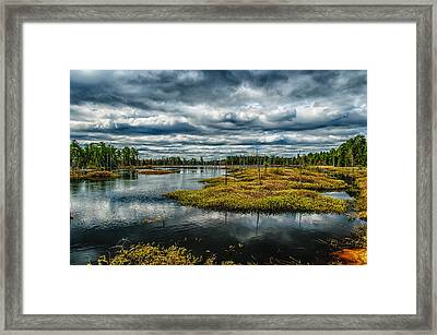 Storm At Franklin Parker Preserve - Pinelands Framed Print by Louis Dallara