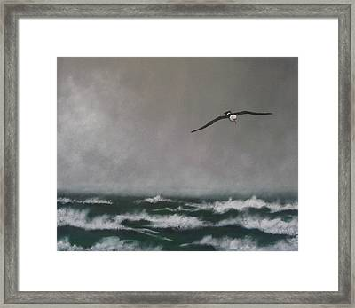 Storm At Sea Framed Print by Robert Bleackley