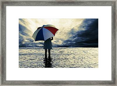 Storm Birds Framed Print by Laura Fasulo