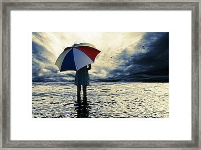 Storm Birds Framed Print by Laura Fasulo