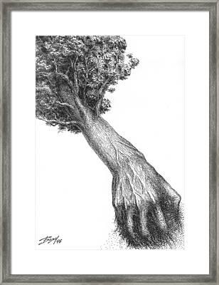 Storm Framed Print by Boyan Donev