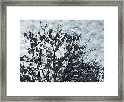 Storm Ends 1 Framed Print by Gene Cyr