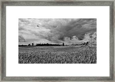 Storm Field - Canada Framed Print