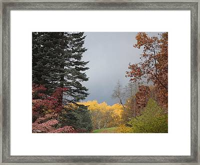 Storm In Hidden Gardens Framed Print