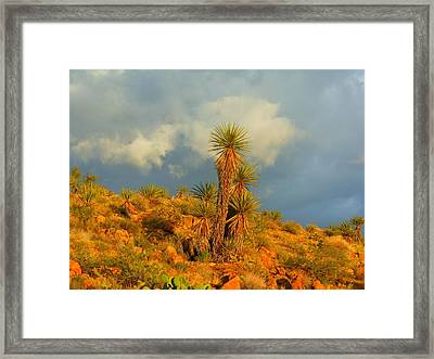 Storm In The Desert Framed Print by James Welch