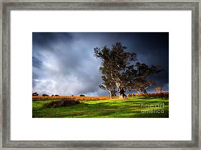 Framed Print featuring the photograph Storm Onto A Vineyard by Boon Mee