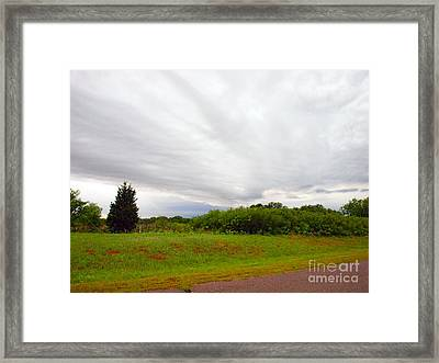 Stormy Cloud Framed Print by Mickey Harkins