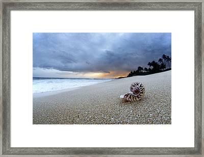 Stormy Dawn Framed Print by Sean Davey