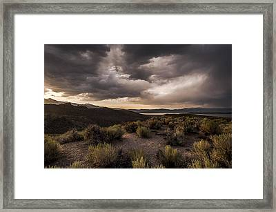 Stormy Day At Mono Lake Framed Print by Cat Connor