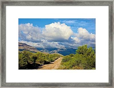 Stormy Day In The Desert Framed Print by Barbara Zahno