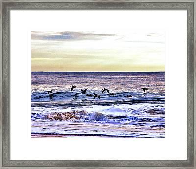 Stormy Flight Framed Print by Kim Bemis