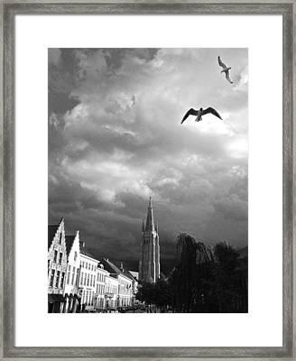 Stormy Gulls  Framed Print