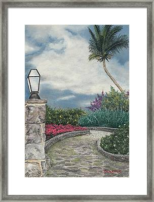 Stormy Path Framed Print by Angela Bruskotter