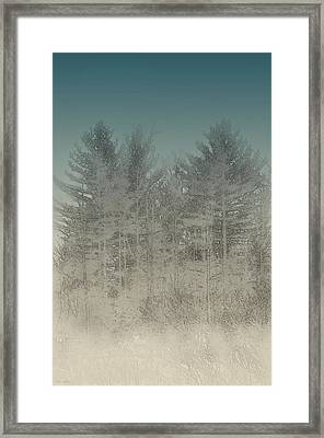 Stormy Pines Framed Print