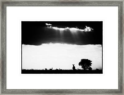 Framed Print featuring the photograph Stormy Silhoettes by Mike Gaudaur