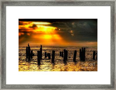Stormy Skies At Sunrise Outer Banks Framed Print by Dan Carmichael