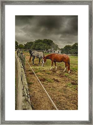 Stormy Skies Framed Print by Kristina Deane