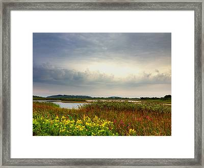 Stormy Skies Framed Print by Nancy Landry