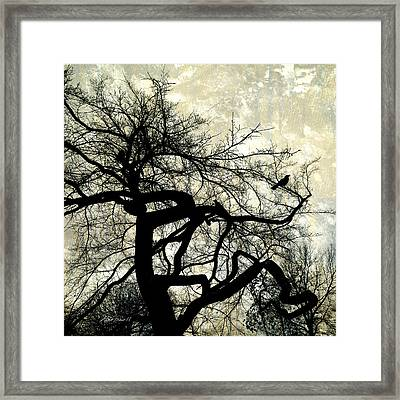 Stormy Weather  Framed Print by Ann Powell