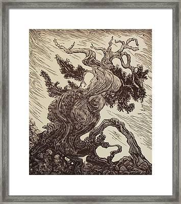 Story Teller Framed Print by Maria Arango Diener