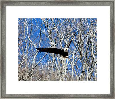 Framed Print featuring the photograph Straight On For You. by John Freidenberg