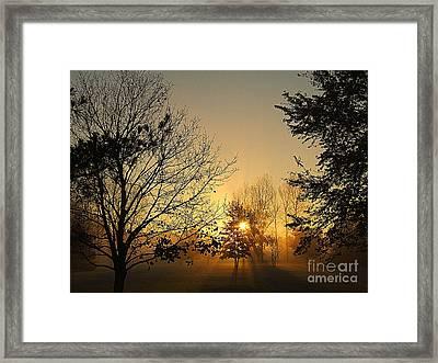 Straight  Through Framed Print