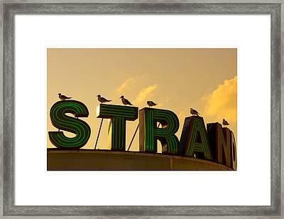 Strand Framed Print by Tom Gari Gallery-Three-Photography