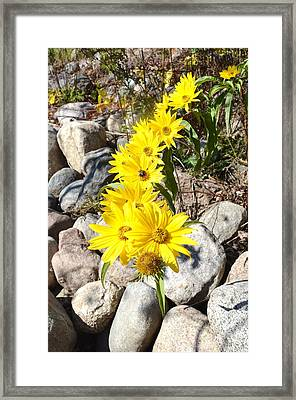 Strand Of Flowers Framed Print