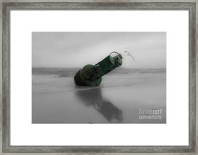 Framed Print featuring the photograph Stranded Too by Angela DeFrias