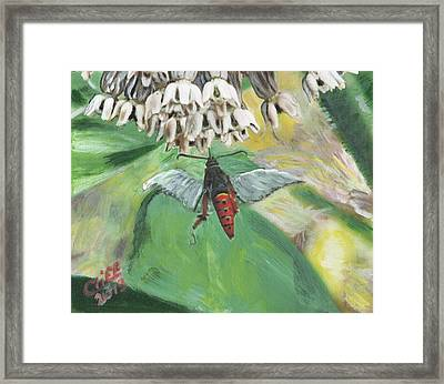 Strange Bug At Flowers Framed Print