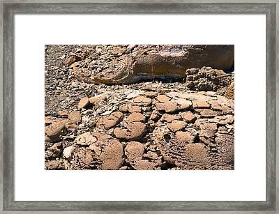 Strange Rock Framed Print