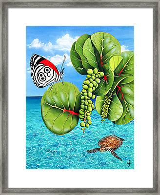 Strangers In Paradise  Framed Print by Carolyn Steele