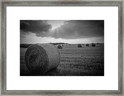 Straw Bales And Sunrays Bw Framed Print by David Dehner