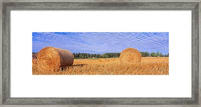 Straw Rolls, Sweden Framed Print by Panoramic Images