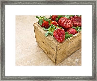 Strawberries Framed Print
