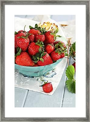 Strawberries  Framed Print by Stephanie Frey